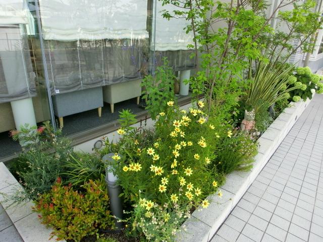 ガーデニング・中庭